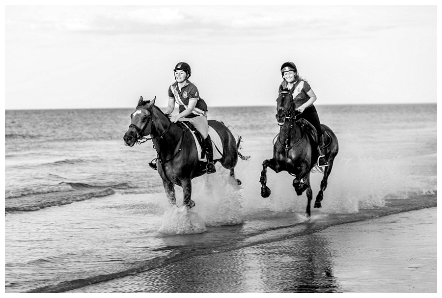 Equine Photographer Norfolk